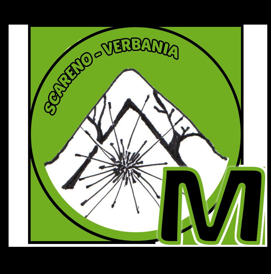 Alce Viola Associazione Sportiva Dilettantistica